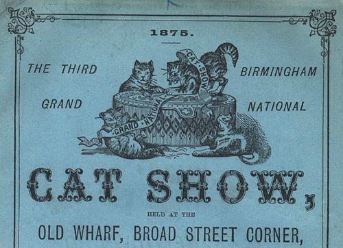 Birminghm Cat Show