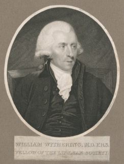 Engraving by unidentified artist from portrait of William Withering.