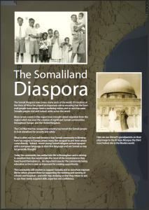 The Somaliland Diaspora (2007) MS 4786