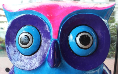 Big Hoot at the Library of Birmingham