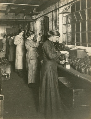 Mills munition workers [WK/B11/6700]