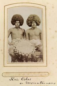 MS 3196 Album 29, P13: Fiji